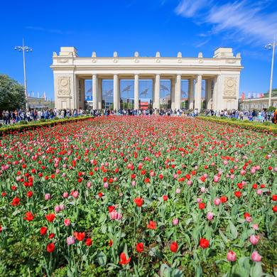 340 тысяч огней зажгутся над тоннелем Победы в Парке Горького