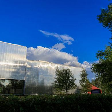 Новая выставка в Музее современного искусства «Гараж»