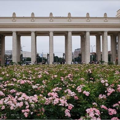 Музей Парка Горького приглашает на вокршоп Паркcollage