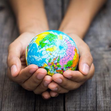 Бесплатный урок по Экологии для детей