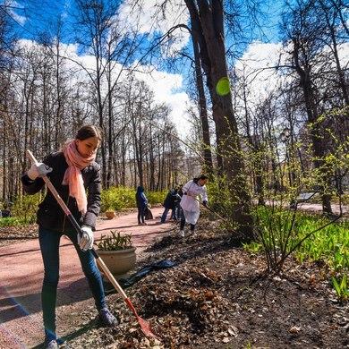 Субботник в Нескучном саду: слёт Общества жёлтых ведерок