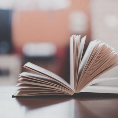 10 лучших книг для чтения в парке по версии Горький Медиа