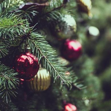 Праздник к нам приходит: «Музыка Рождества» в Музее Парка Горького