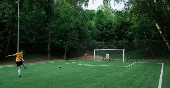 Neskuchny Garden Football Field