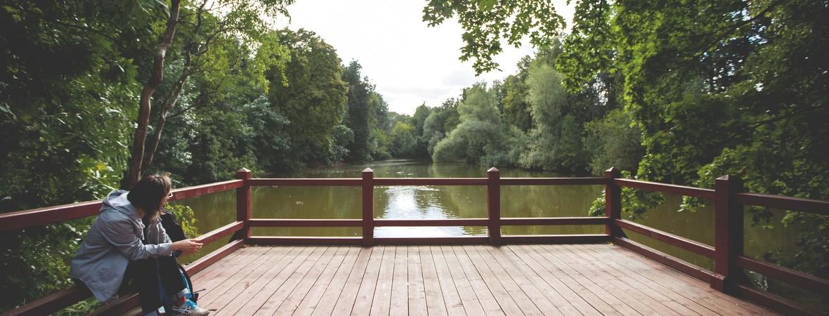 Andreevsky ponds