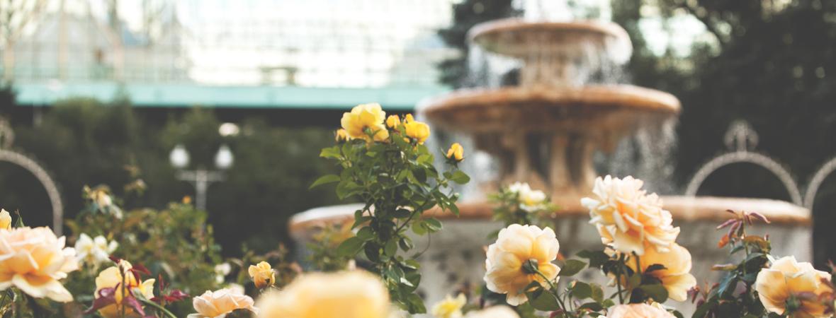 Розарий с фонтаном