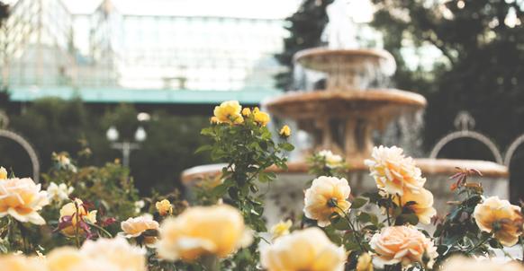 Rosarium fountain